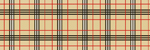 New Burberry Plaid